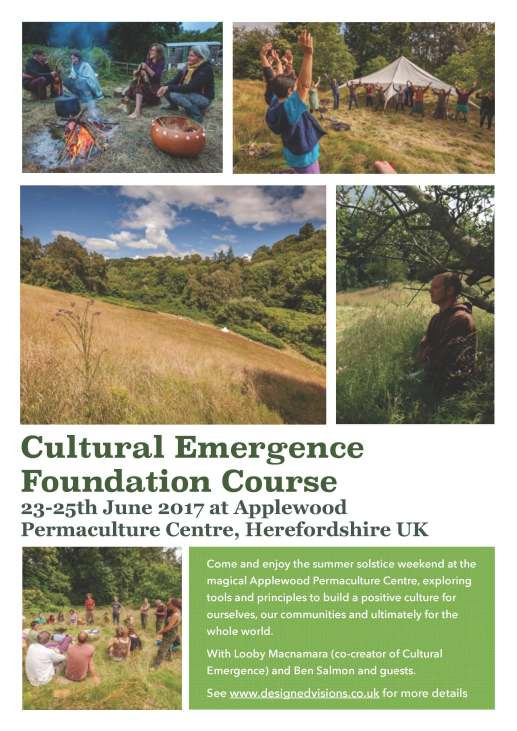 Cultural emergence foundation course
